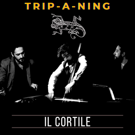 COVER TRIP A NING IL CORTILE